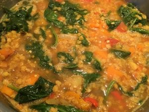Red Lentil Vegetable Dal